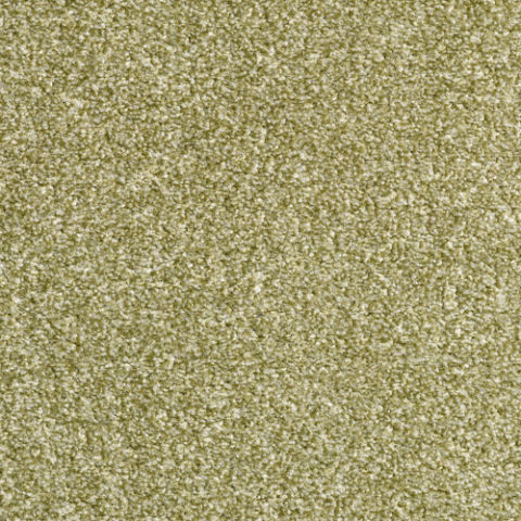 Eminent Twist Carpet