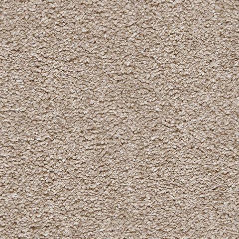 Stainsafe Shepherd Twist Carpet by Balta