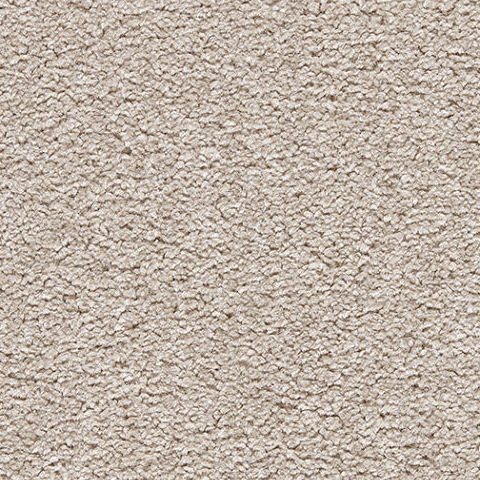 Stainsafe Shepherd Twist Carpet