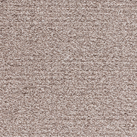 Noble Collection Carpet