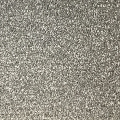 Oxford Carpet