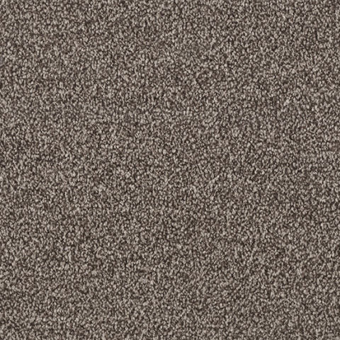 Startwist Edition Carpet